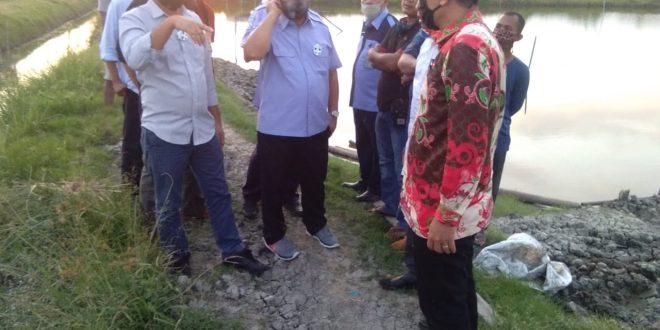 Sambangi Lamsel, Dirjen Perikanan Budidaya KKP Akan Bangun Klaster Budidaya Udang Di Kecamatan Ketapang